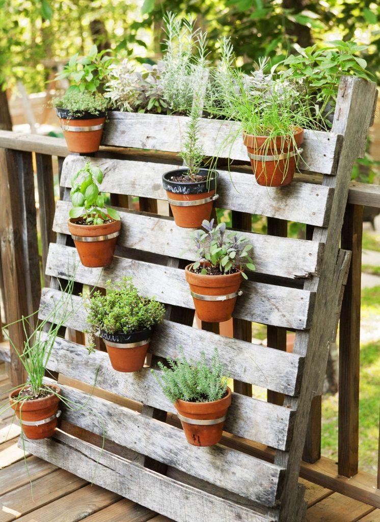 small indoor herb garden   Popular Small Herb Garden For ...